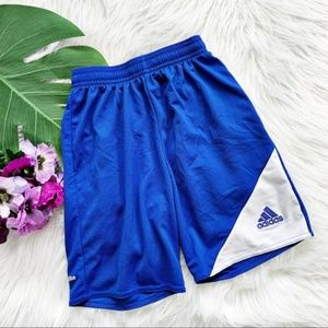 Adidas Blue and White Shorts Climalite